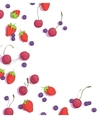 cherries blueberries and strawberries vector image