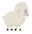 Cute cartoon little sheep isolated on white vector image vector image