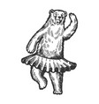 dancing circus bear animal engraving vector image vector image