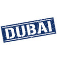 dubai blue square stamp vector image vector image