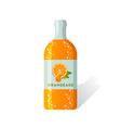 Orangeade bottle vector image vector image