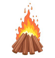 campfire with woodpile on white background vector image