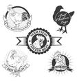chicken meat vector image vector image
