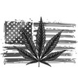 design an isolated usa flag with a hemp leaf vector image vector image
