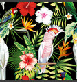 parrot tropical flowers and leaves seamless vector image vector image