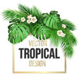 square frame with tropical leaves vector image