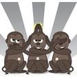 teasing three wise monkeys vector image