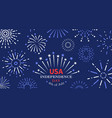 4th july freedom fireworks usa independence vector image
