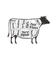 cuts beef cow or bull butcher shop meat vector image vector image