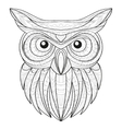 Hand drawn doodle outline owl vector image vector image