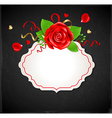 Red rose and green leaves vector image