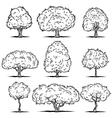 set deciduous trees line art vector image