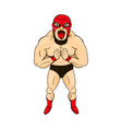 mexican wrestler in cartoon style character vector image
