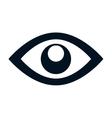 eye symbol isolated icon vector image