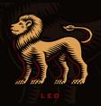 a leo zodiac sign vector image