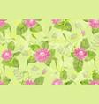 beautiful pink flowers vector image vector image