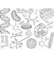 Biology and chemistry icons isolated vector image vector image