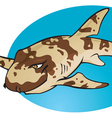 Cartoon Bamboo Shark vector image vector image