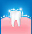 clean and strong white tooth with glittering vector image