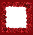 frame of red blossom rose flowers for greeting vector image