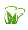 Fresh green herbal teapot vector image