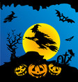 halloween witch flying on broomstick vector image vector image