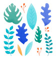 set concept botanical graphic elements isolated vector image vector image