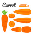 set of fruit and vegetable carrot vector image