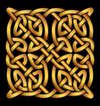 celtic folk ornament vector image