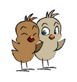 cute little chicks baby animal bird cartoon vector image vector image