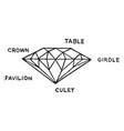 diamond cut vintage vector image vector image