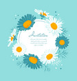 flowers card chamomile background daisy wreath vector image vector image