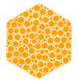 hexagon figure icon collage vector image vector image