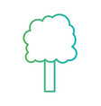 line natural tree to ecology care vector image vector image