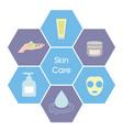 skincare concept skincare concept vector image