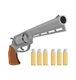 Gun with silver bullets Revolver for vampire vector image vector image