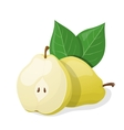one pear and half pear vector image vector image