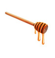 realistic bee honey dripping from wooden stick vector image