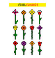 set various colorful pixel flowers vector image