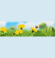 spring landscape green grass and yellow vector image vector image