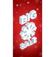 Winter Big Sale and big snowflake vector image