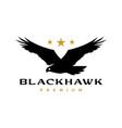 black hawk eagle flying roar star logo icon vector image vector image