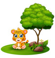 cartoon tiger sitting under a tree on a white back vector image