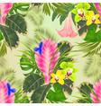seamless texture tropical flowers tillandsia vector image vector image