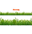 spring green grass 3d realistic seamless pattern vector image vector image