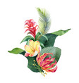 watercolor bouquet tropical leaves vector image vector image