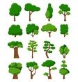 Set of sixteen trees vector image