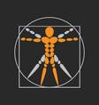 anatomy logo icon design vector image vector image