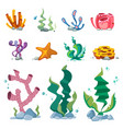bright seaweeds aquarium decoration cartoon vector image vector image