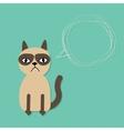 Cute sad grumpy siamese cat and scribble speech vector image vector image
